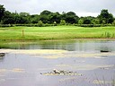 OF206 GARRYHINCH GOLF COURSE PONDS