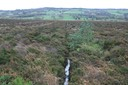 TI55 Nore Valley Bogs
